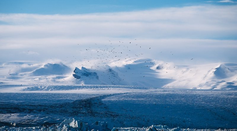 arktis reisezeit