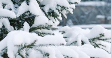 Warum Weihnachten und Skandinavien einfach zusammengehören